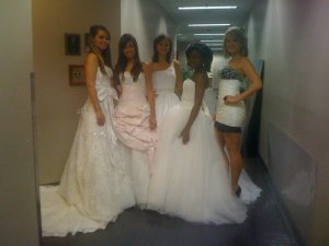 Some of Wedding Gowns to be showcased at the Niagara Autumn Wedding Show